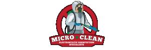 Micro limpieza